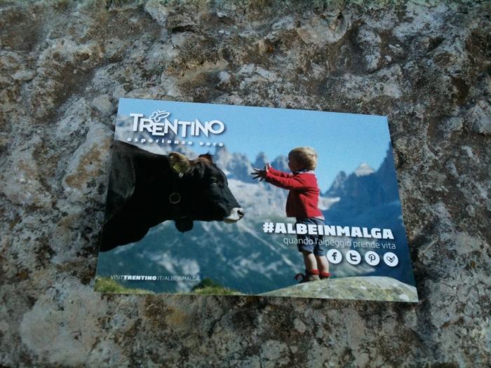 AlbeInMalga Cartoline