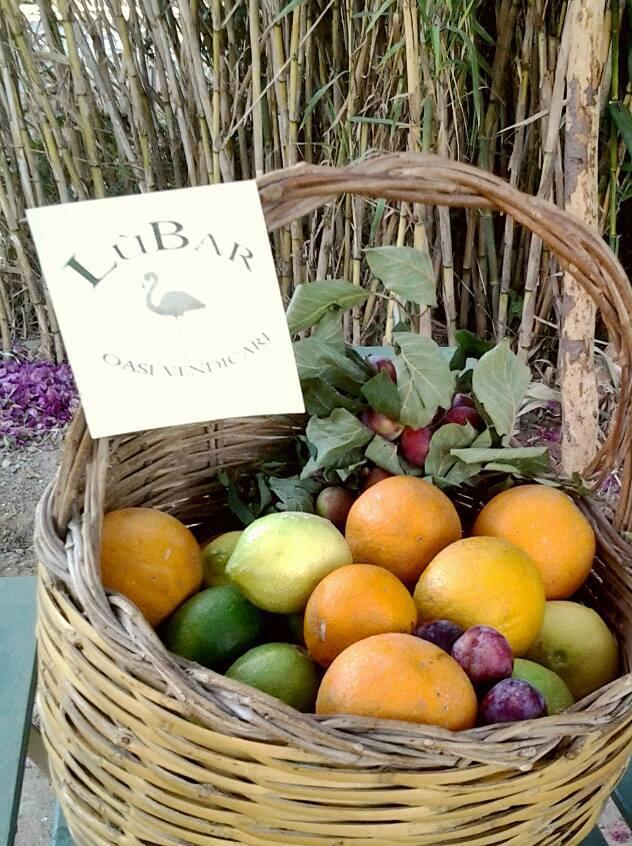 Lùbar_frutta